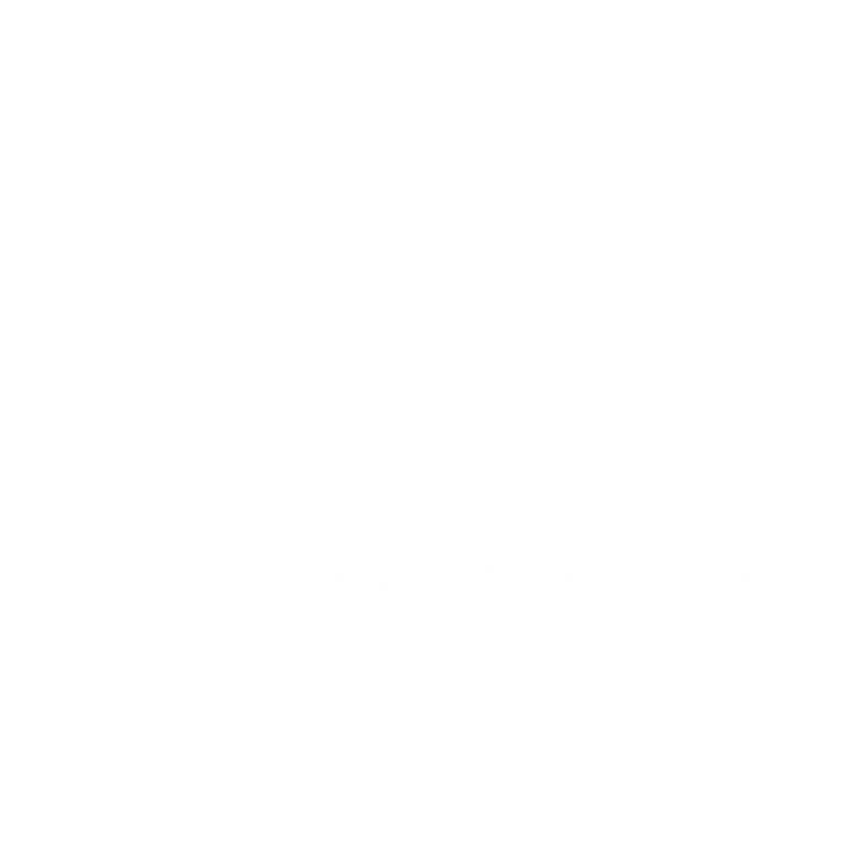 dublin-city-council logo trans